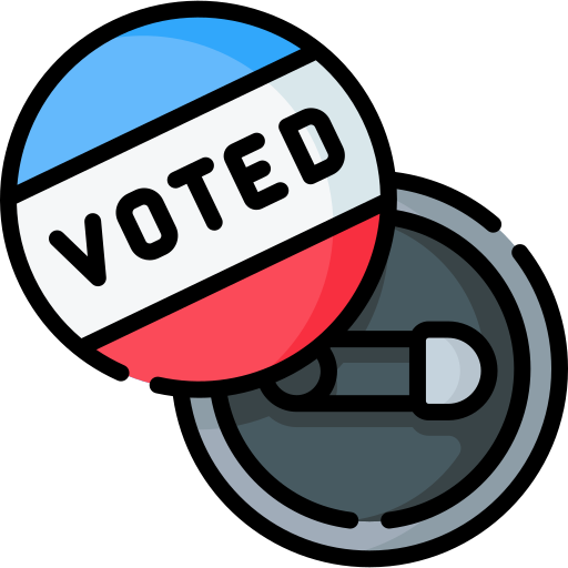 I Voted Pin